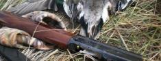 FACE: EK vērsīsies pret legālo ieroču īpašniekiem