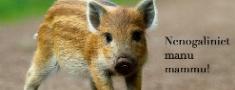 Latvijas dzīvniekus ārvalstniekiem?