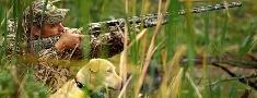 LMKA medību šķirnes suņu turētāju un audzētāju zināšanai