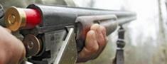Ludzas novadā izņem nelikumīgi glabātu ieroci