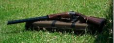 Saeimā izskata ieroču aprites kārtību