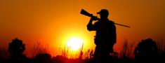VMD palielina vilku nomedīšanas limitu